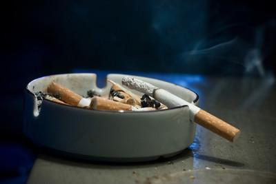 哪里有卖山茶花香烟的批发市场?