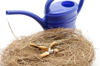 你在延安有什么特别的产品?你通常抽哪种香烟?