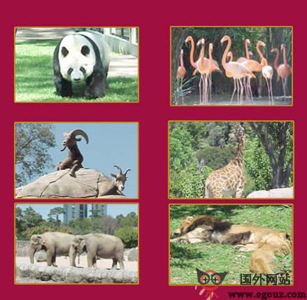 【经典网站】Chapultepec:墨西哥查普尔特佩克动物园