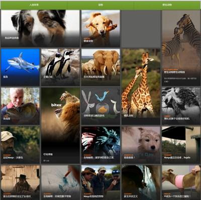 【经典网站】AnimalPlanet|动物星球探索频道