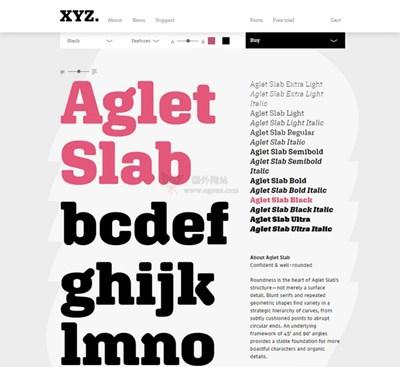 【素材网站】XYZType|可测试的英文字体定制网