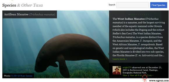 【经典网站】InaturaList:基于分享的大自然生物网