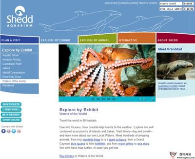 【经典网站】SheddaQuarium:赛德水族馆官网