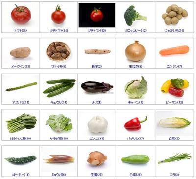 【素材网站】Sozai:免费高清食物素材图片网