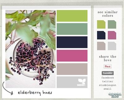 【Wordpress相关】获取来自大自然的颜色:Design Seeds