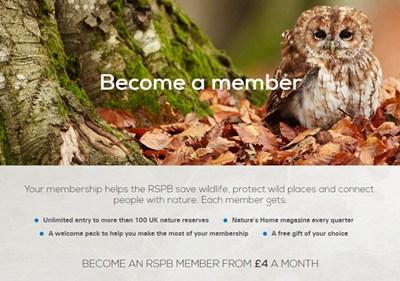 【经典网站】RSPB:英国皇家鸟类保护协会
