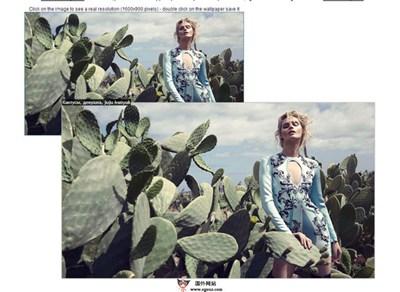 【工具类】Imagus:基于浏览器图片增强扩展工具