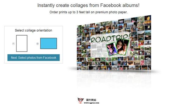 【工具类】PosterMyWall:免费在线制作海报风格工具