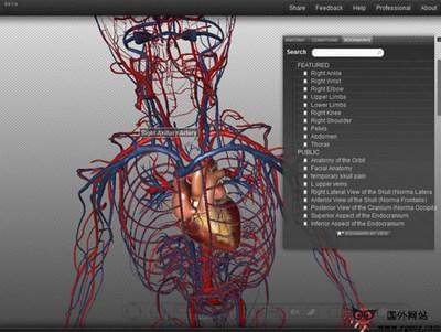 【经典网站】BiodiGital:在线3D人体结构模拟平台