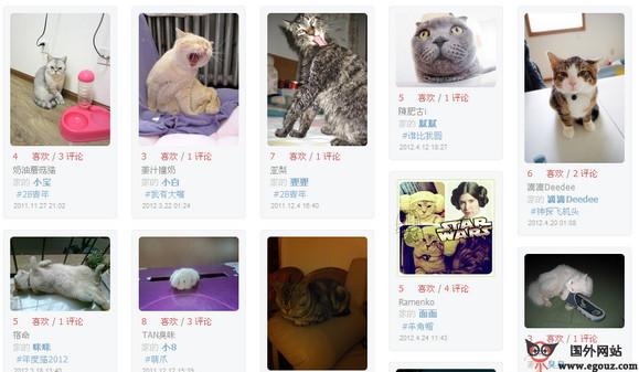 【经典网站】ErMiao:鸸鹋动物园宠物社区