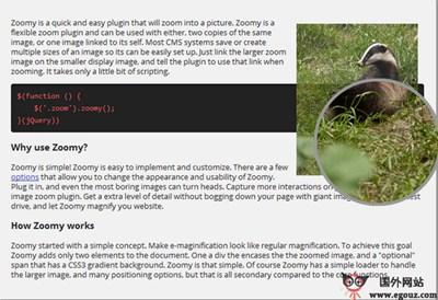 【工具类】ZooMy.ME:图片放大镜插件开发工具