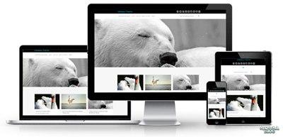 【Wordpress相关】18 个由 Bootstrap 构建的免费 WordPress 主题