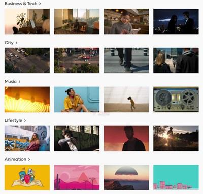 【素材网站】免费高质量商用视频素材 – Mixkit
