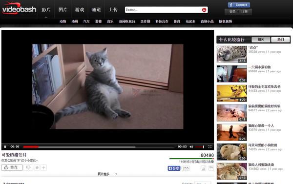 【经典网站】VideoBash:每日搞笑娱乐视频网