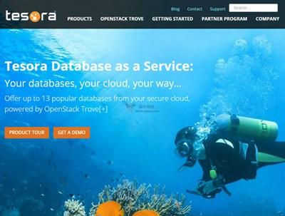 【经典网站】Parelastic:云端数据库管理系统
