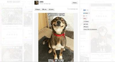【经典网站】MemeGallery:在线搞笑娱乐资源分享网