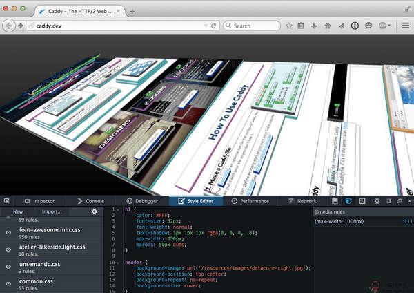 【经典网站】CaddyServer:网站服务器架设系统