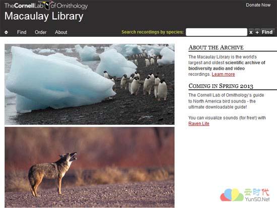 【数据测试】全球最大的自然声音档案馆:Macaulay Library