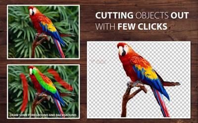 【工具类】在线照片去背景智能工具 – PhotoScissors