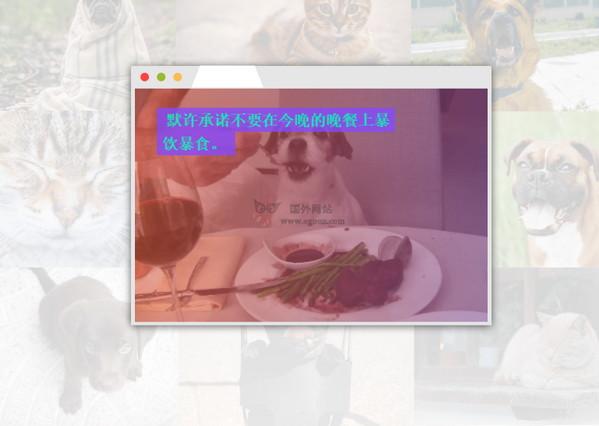 【工具类】JoyTrigger|治愈系可爱动物分页