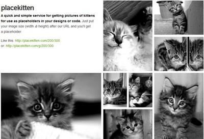 【数据测试】网页设计必备!Placekitten 超萌小猫图片占位图制作
