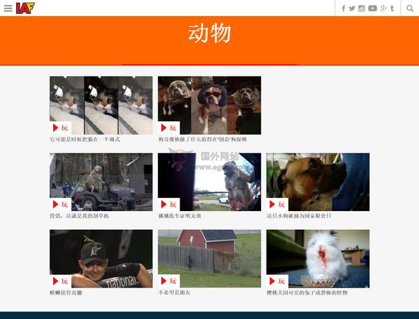 【经典网站】Iaftv:互联网焦点视频网