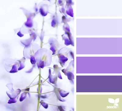 【经典网站】DesignSeeds|设计种子颜色研究博客