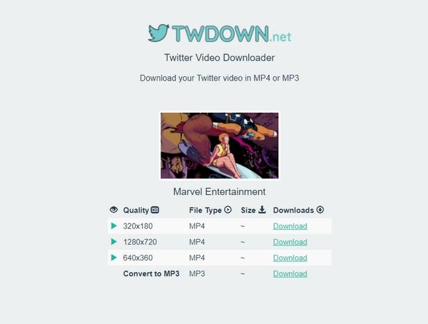 【工具类】Twdown 在线Twitter视频下载器