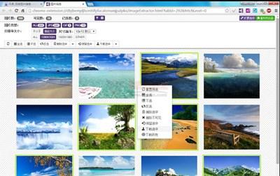 【工具类】ImageAssistant|浏览器图片功能增强助手