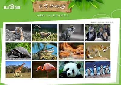 【数据测试】百度动物园上线,中国首个动物直播网络平台