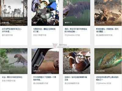 【经典网站】EarthTouch:野生动物新闻网