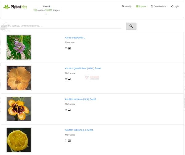【工具类】Pl@ntNet|在线花卉植物图片识别工具