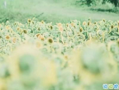 难过说说-伤感爱情说说:想你的时候有些幸福,幸福的有些难过。