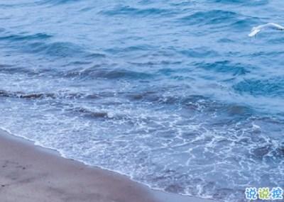 海边游玩发朋友圈的说说 海边度假说说唯美句子