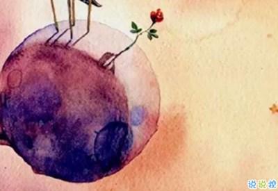经典小王子中的有哲理而又简单的图片句子 如果你被一朵花驯养