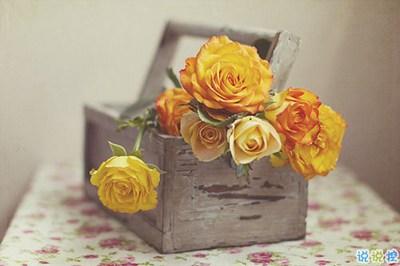 经典唯美的浪漫句子致爱情 很暖心很有爱的唯美句子大全