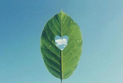 关于人生的超励志正能量图片说说 你优秀了自然有对的人与你并肩