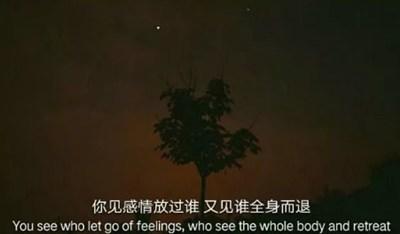 伤感句子表达心情失落长句 无人待我情自深无人伴我立黄昏