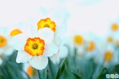关于早安的句子-2019告别二月迎接三月励志说说配图 三月你好朋友圈早安心语