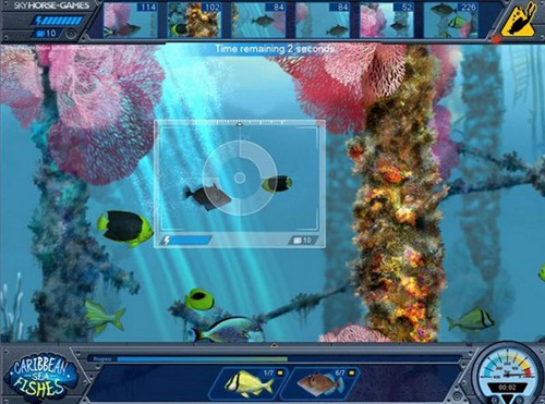 加勒比海之鱼_【动作冒险动作冒险单机版】(112M)